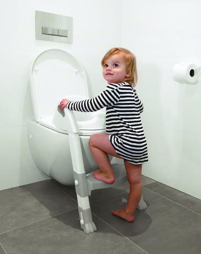 Roger Armstrong Ultimate Toilet Trainer White And Grey